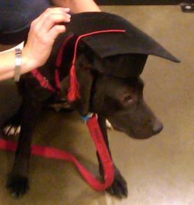Lulu Graduation 2010