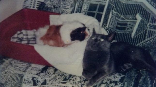 Sam & Zack 1999