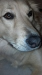 2012-09-01_07-39-13_906