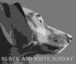 black-and-white-sunday1