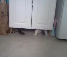 under cabinet