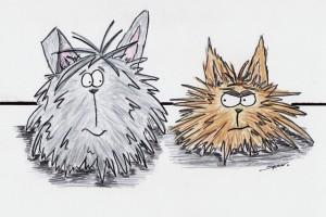 Dust Bunny Cartoons