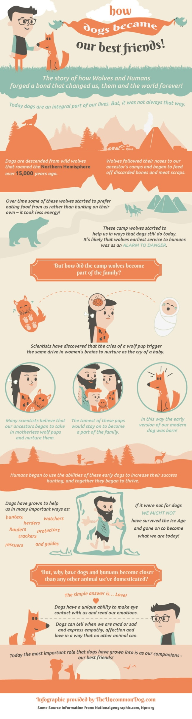 canine_infographic_FIN