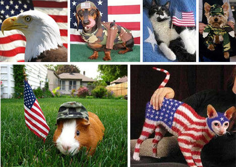 PATRIOTIC-ANIMALS