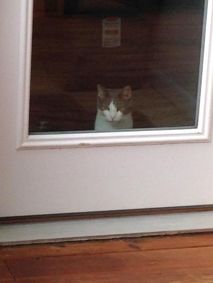 Nine at the door