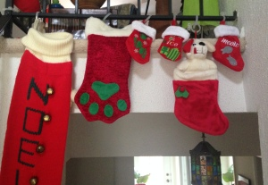 gift stockings