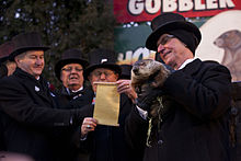 groundhog_day_punxsutawney_2013-1